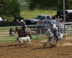 Welch Jr Rodeo, May 2014 (Garagewerks) Tags: horse pet oklahoma race sony junior rodeo athlete saddle equine 50500mm views50 views100 views200 views250 views150 f4563 slta77v allsportwelchjrrodeo may2014countrycowboycowgirlhorseequinecowboycowgirl