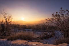 Sunrise landscape (Eduard.I.P) Tags: sun sunny sunrise sundown sunset landscape photography photographer winter wintertime tree snow viral romania roumania nikon d7200 1024mm simplysuperb simply superb