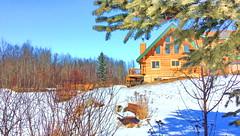 Happy Bench Monday! (peggyhr) Tags: peggyhr hbm bluebirdestates snow bench trees loghouse lake frozen