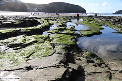 MRP_7357 (preedyphotos) Tags: cornwall kernow portreath beach coast northcornihcoast rocks tidesout walkingonbthebeach beachwalking outdoors exercise sand martinpreedy canon eos1dx