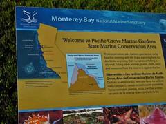 Pacific Grove, California (Jasperdo) Tags: pacificgrove california roadtrip pacificgrovemarinegardens montereypeninsula sign exhibit