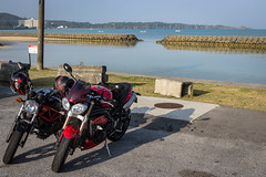 IMG_2795 (HoragamePhoto) Tags: speedtriple