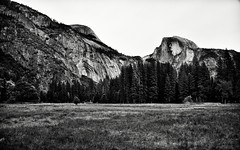 Cook's Meadow and a View to Take in Half Dome and North Dome (Black & White, Yosemite National Park)