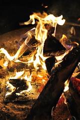最近すっかり焚き火好きになった娘たち。 (あんでぃ) Tags: 八ヶ岳 焚き火