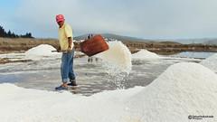 Salina Lo Valdivia (Sal Andrade) Tags: salina chile trabajo tradicional paisaje marítimo sal paredones lo valdivia