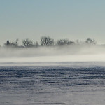 Foggy Winter - Hiver brumeux thumbnail