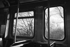 empty spaces stock photo #237 (KevinIrvineChi) Tags: outside inside consumerist chicago chicagoist cta ctabrownline ctatrain train rail railcar blackwhite bw bnw black white trees window bars handrail stanchion sony dscrx100 out empty space spaces transit publictransit publictransport city urban goose island