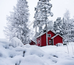 Typical Finnish home (Nippe16) Tags: finland finnish color contrast snow winter wonderland moody cold hut house landscape atmosphere nature