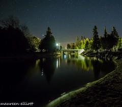 Bridge at Night (maureen.elliott) Tags: bridge nightshot stars night landscape greycounty river trees dark outdoors 7dwf