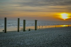 20170313-_MG_4847 (chrischampion2) Tags: brighton sea seaside beach pier palacepier westpier britishairwaysi360 horsecarousel fairgroundride carousel