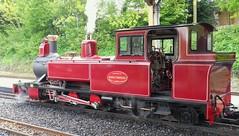 D5_BVR_Everything_Goes_Gala_25-05-2013 (peter_skuce) Tags: train railway burevalleyrailway leekandmanifoldrailway alankeef alysham winsonengineering classzb