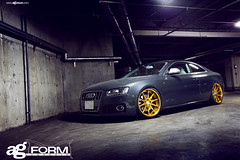 f420-gold-bullion-audi-s5-sidefront (AvantGardeWheels) Tags: japan gold flat wheels ag lip form reverse audi avant garde concave s5 ignition bullion 24k f420 motorgroup spec2 soundwit