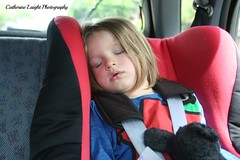 Sleepy Mr Strong (Catherine Laight) Tags: sleeping carseat photoaday canon350d deacon mrstrong 2013