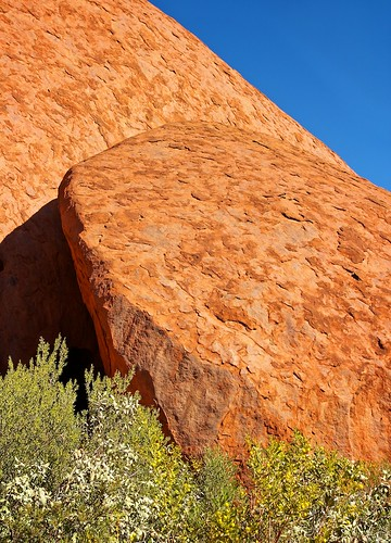 Hard Scaly Rock, Vibrant Green Growth, Uluru_img 0115