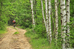border path (.:: Maya ::.) Tags: road mountain tree bike bulgaria mtb biker birch bikearea