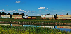 Alberta Train (LostMyHeadache: Absolutely Free *) Tags: flowers summer sky cars industry nature water field grass clouds train canon reflections river landscape countryside stream rail railway automotive cargo foliage vehicles shipping freight traincars davidsmith cnrail canadiannationalrailway calgaryalbertacanada eos60d
