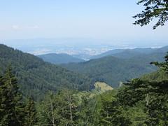 Da unten ist Freiburg (chris_freiburg) Tags: mountains forest berge freiburg wald schwarzwald blackforest kappel