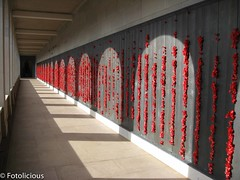Wall of Honour (Fotolicious) Tags: australia canberra warmemorial act