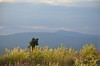 (dukebauer) Tags: eagleplains dempsterhighway summer2013