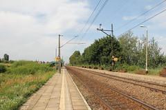 Lubanie train station 25.07.2013 (szogun000) Tags: railroad station canon tracks poland polska rail railway platforms pkp kujawskopomorskie lubanie kuyavianpomeranian canoneos550d canonefs18135mmf3556is d2918