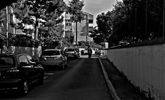 (enricoerriko) Tags: china road street door red italy woman sun moon man green argentina smile female us photo blackwhite strada italia noir tramonto alba map moscow libro made uomo giallo land donne prc rue cartina popolo rosso cavallo lettura italie marche enrico vie citt portone rpc uomini repubblica lemarche sulky bl romanzo marcheregione regionemarche casepopolari civitanovamarche portocivitanova cartacanta citan erriko enricoerriko fotodicivitanovamarche