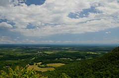 Indian Ladder Tr_20130729_120147_ (bfaling) Tags: park county trees summer cliff newyork green nature outdoors indian ridge trail albany lush overlook thatcher 2013