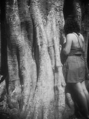 (Caarlos*) Tags: planta blanco azul arbol persona photography photo mujer foto negro cielo fondo fotografía rbol