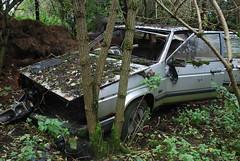 Talbot Tagora (Sam Tait) Tags: england classic cars rotting yard weeds sad 25 rotten scrap salvage talbot tagora