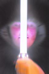 Spectral (Trevor King 66) Tags: light postprocessed photoshop nikon glow spooky ghostly spectre hooded lightsabre d3100