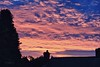 Sunset (thingamijig) Tags: pink winter silhouette clouds dusk redsky canon400d pinkalicious mygearandme