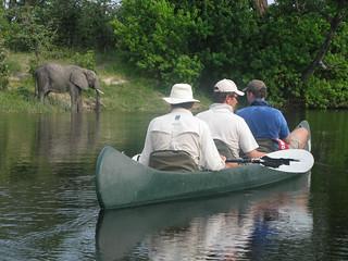 Botswana Okavango Delta Photo Safari 81