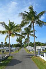 Key West (Florida) Trip, November 2013 8048Ri 4x6 (edgarandron - Busy!) Tags: cemeteries cemetery grave keys florida graves keywest floridakeys