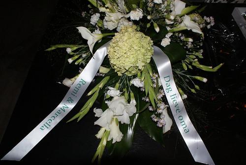 45mm wit lint met groen bedrukt in Constantia