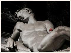 Campo Verano Rom 2014 (zsirra) Tags: friedhof cemetery graveyard statue monteverde engel begraafplaats gräber friedhöfe cimtero campoveranoroma