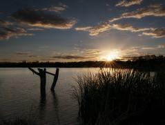 Lake Wyangan South (Jeff 05) Tags: