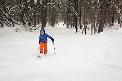 Breaking Trail (ggrayum) Tags: winter snow washington ethan valley methow skivacation