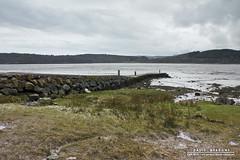 Rockcliffe (DMeadows) Tags: sea beach landscape coast scotland seaside shoreline shore solway dumfries galloway rockcliffe davidmeadows dmeadows davidameadows dameadows