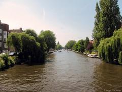 Amstelkanaal (jpmm) Tags: amsterdam bomen vogel zuid bootjes 2015