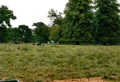 The site of old Rollesby Hall (photo by Roger Johnson)