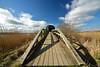 For birdwatchers (Jim Skovrider) Tags: 1116f28lens atx116prodx adobephotoshoplightroom d800 danmark denmark gudenå nature nikon nikond800 nikonfx nikonfxshowcase randers randersfjord sky tokina ultrawide