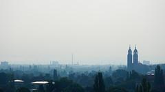 Blue Dresden
