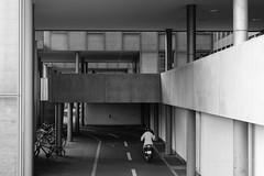 DSC09798_s (AndiP66) Tags: architecture architektur basel schweiz switzerland petermerian gebäude building blackandwhite schwarzweiss schwarz weiss black white monochrome sony sonyalpha 7markii 7ii 7m2 a7ii alpha ilce7m2 sonyfe28–70mmf35–56oss fe 28–70mm f35–56 sel2870 emount kitlens andreaspeters