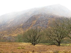 8547 Corrie in the mist (Andy - Busyyyyyyyyy) Tags: 20170318 ccc clouds day9 mist mmm morvern scotland
