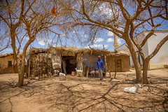 Somaliland_Mar17_0308 (GeorginaGoodwin) Tags: georginagoodwingeorginagoodwinimageskenyakenyaphotojournalistkenyanphotojournalist kenyaphotographer eastafricaphotographer kenyaphotojournalist femalephotographer idps refugees portraits portraitphotographer canon canon5dmarkiii canonphotos drought famine somalia somaliland malnutrition foodsecurity donorfunding aid foodaid wash health sanitation hornofafrica