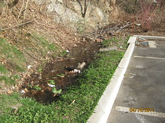 IMG_0937 (Stormwater Maintenance, LLC) Tags: problem sediment standingwater grasschannel