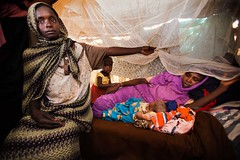 New displaced people from East Darfur (Albert Gonzalez Farran) Tags: sudan un unitednations emergency humanitarian usg idp zamzam newarrivals northdarfur internallydisplacedpersons elfasher undersecretarygeneral newdisplacedpersons