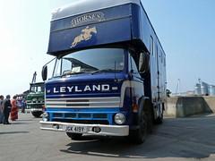 JGK419Y Leyland Terrier Horsebox (Beer Dave) Tags: truck good terrier lorry chatham commercial vehicle equestrian leyland horsebox lgv jgk419y