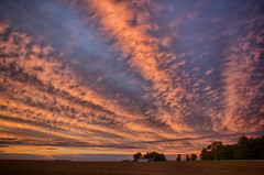 Evening Sky at Sunset (Larry Senalik) Tags: sunset sky clouds canon illinois high dynamic nik range hdr t3i 2013