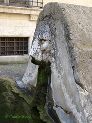 Astalli 19 (Via degli) - Palazzo Altieri - Abbeveratoio 04 (Fontaines de Rome) Tags: rome roma fountain brunnen fuente via font fountains fontana fontaine 19 rom fuentes bron fontane fontaines palazzoaltieri abbeveratoio astalli viadegliastalli viadegliastalli19