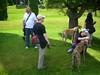 LakeWaban6-17-2012010